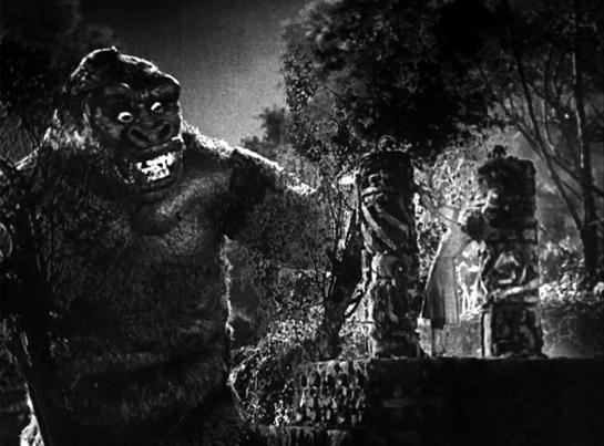 Kong first look