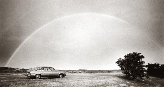 Rainbow, Delmarva