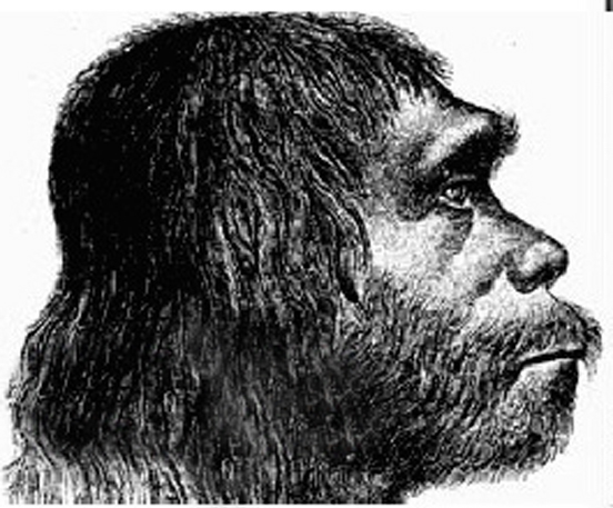 victorian neanderthal