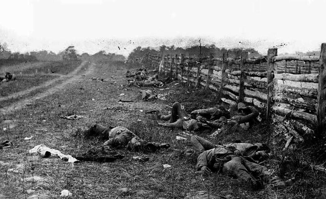 bodies on battlefield antietam