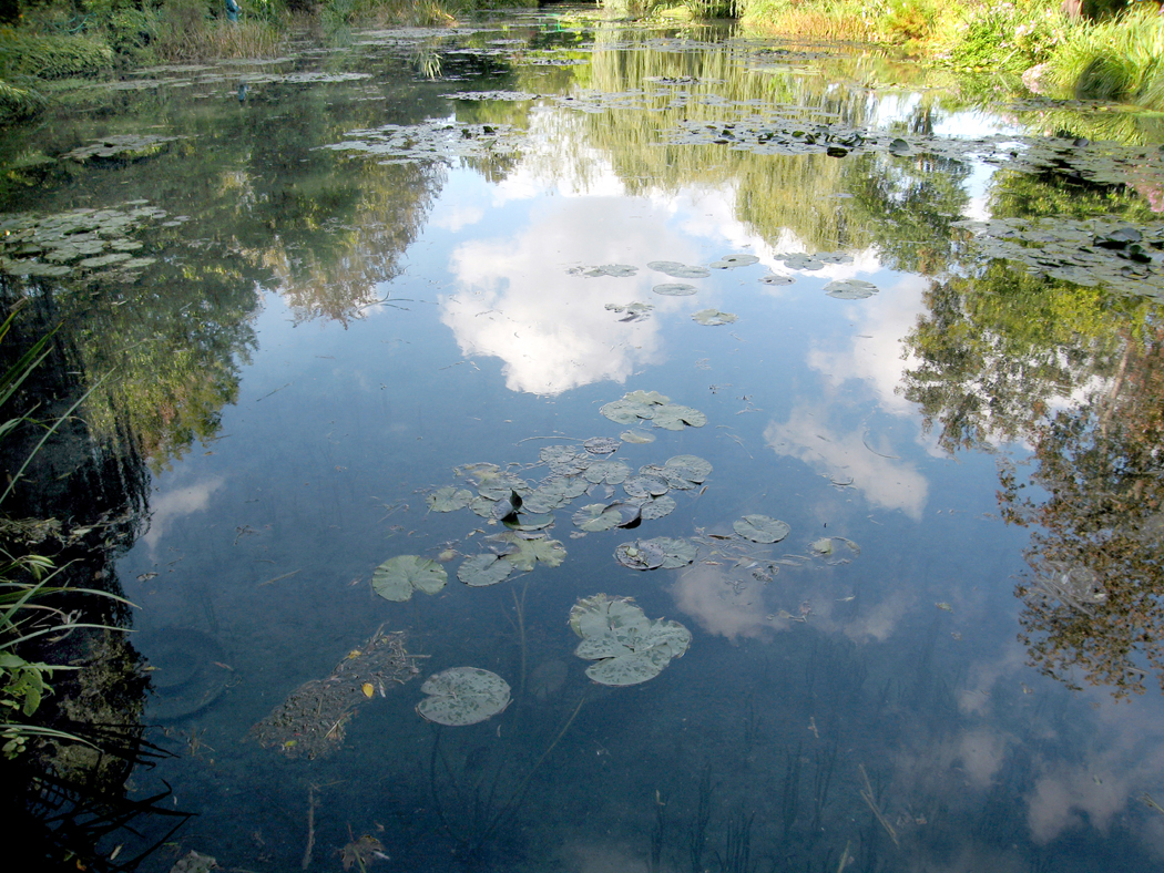 Waterlily pond at Giverny
