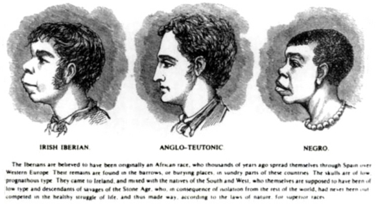 Irish negroes