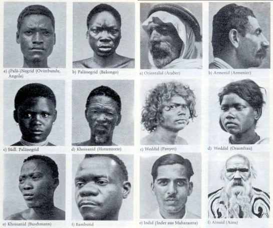 race types