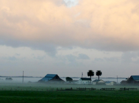Eureka farmland