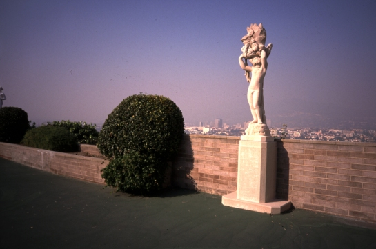 forest lawn 3