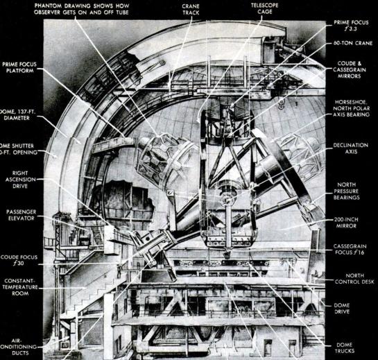 hale telescope cutaway
