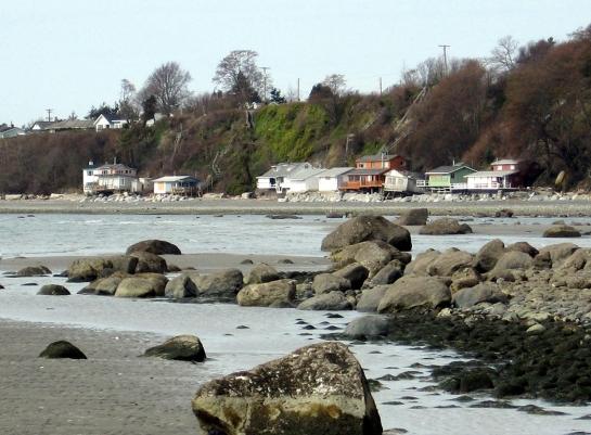 point roberts shoreline