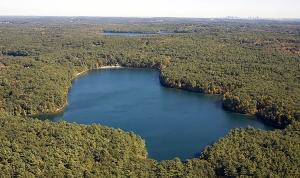 walden pond aerial view