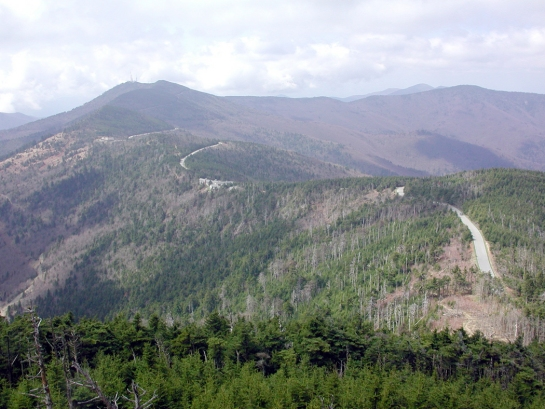 road up Mt. Mitchell