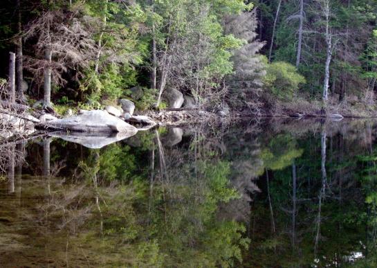 Fox Lake