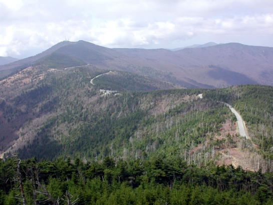 road up Mt. Mitchell copy