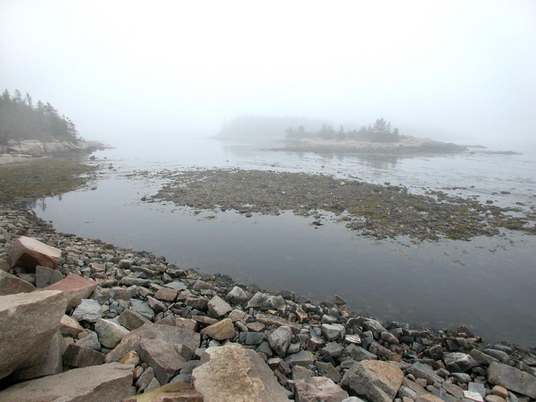 Schoodic Point, Acadia NP