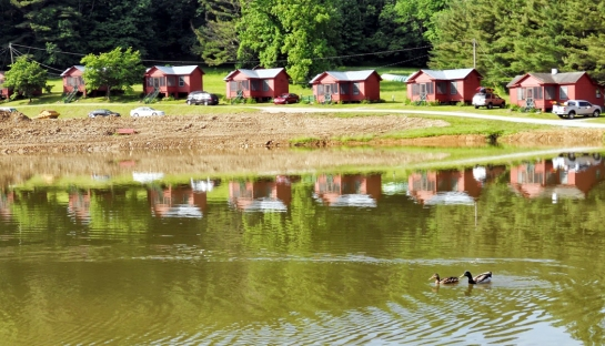 shatley cabins with ducks