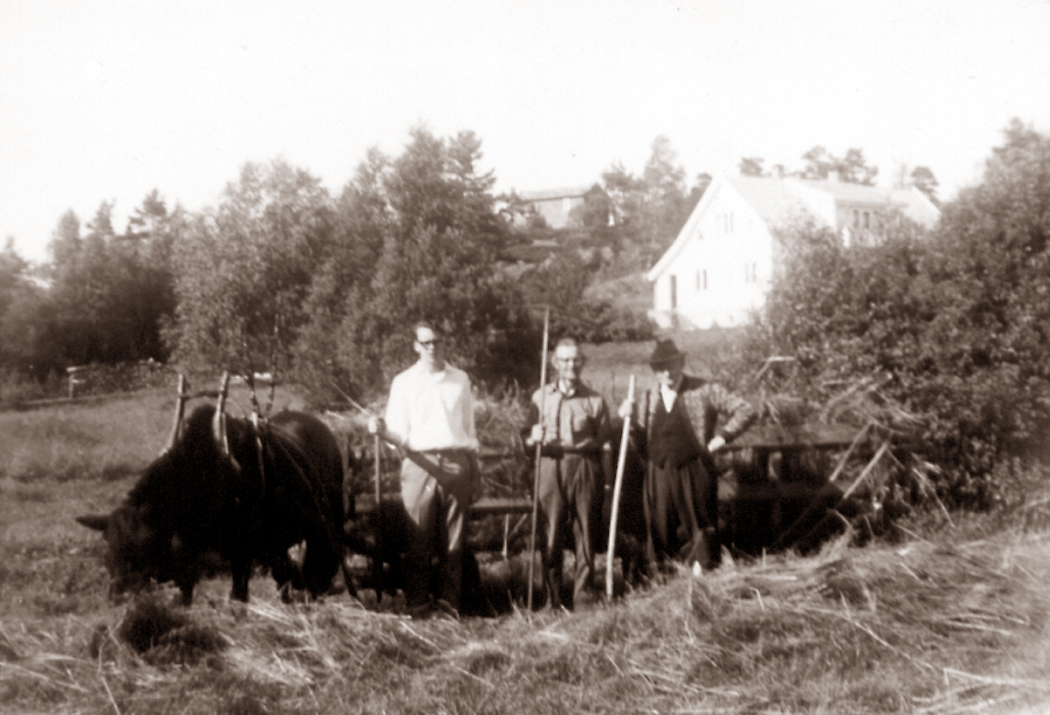 The author, Anders Vehus and old uncle Thorvald, 1966