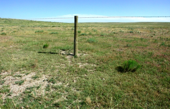 Pawnee fencepost