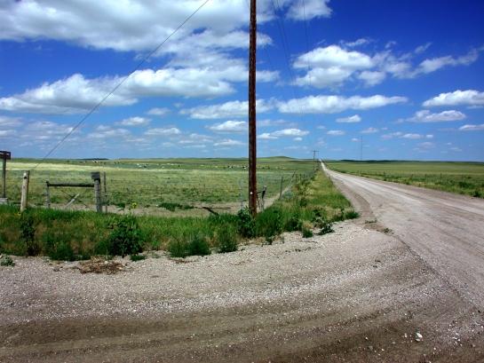 Pawnee phone pole