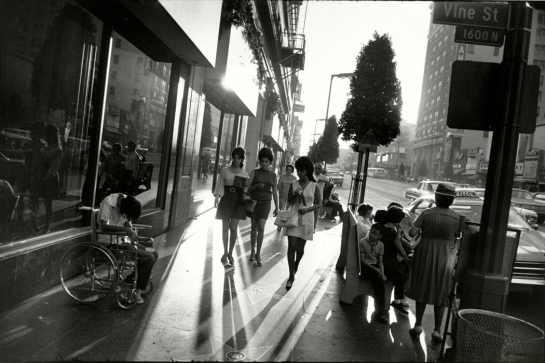 winogrand hollywood