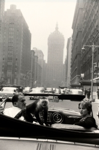 winogrand monkey in car