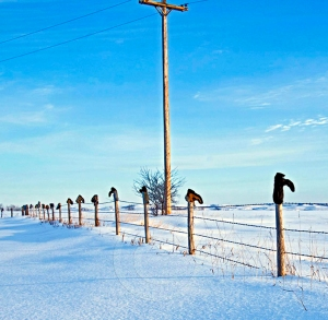 north dakota snow fence