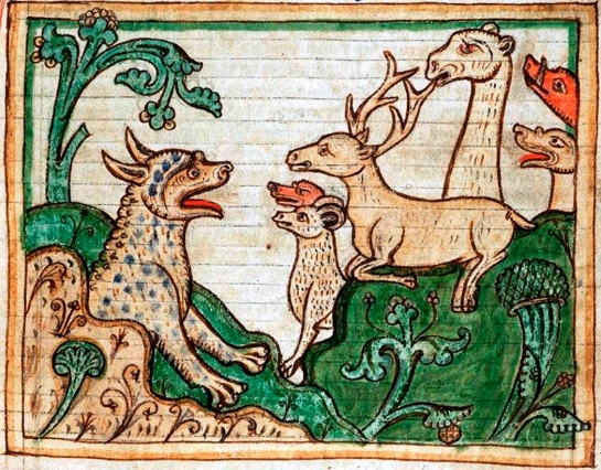 medieval animals copy