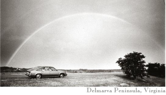 01 Rainbow, Delmarva