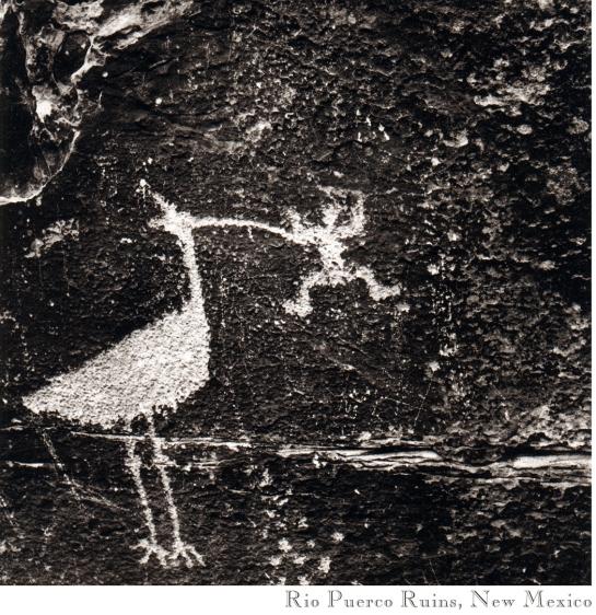 08 Petroglyph