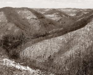 appalachian plateau BW cropped