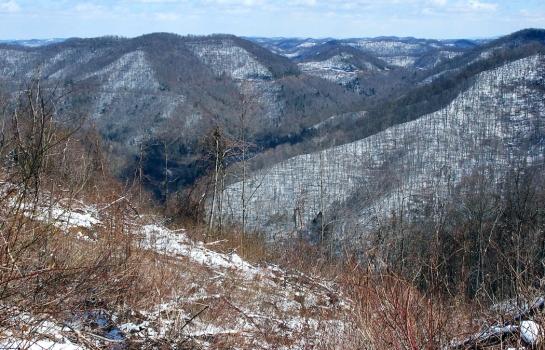 Appalachian Plateau wv 1