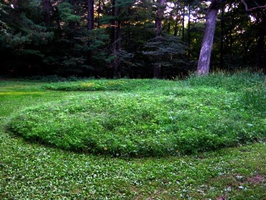 Bear Mound 1