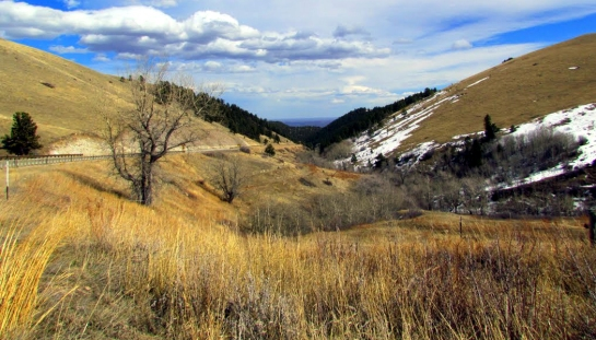 bighorn mountains 2