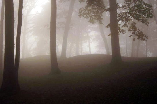 effigy mounds fog