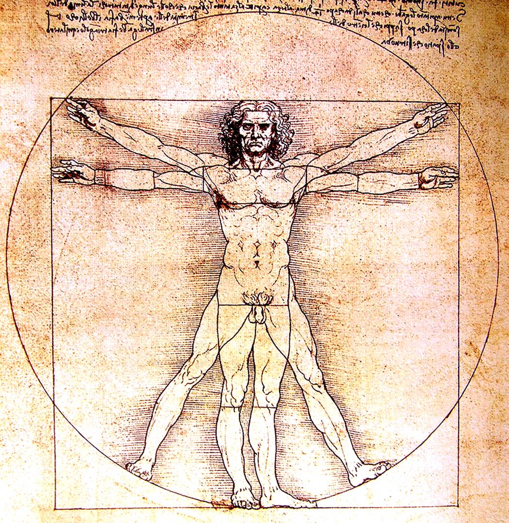 the gallery for  gt  vitruvian man Vitruvian Man Clip Art Vitruvian Man Clip Art