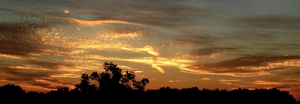 Baldwin Co. Ala. sunset
