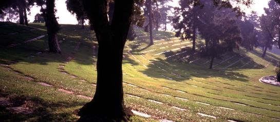 Forest Lawn cemetery LA