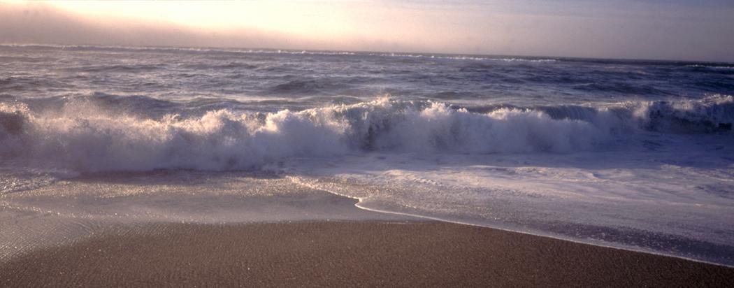 leo carillo st beach california