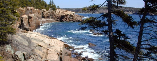 Thunder hole Acadia NP Maine