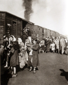 deportation to treblinka 1942
