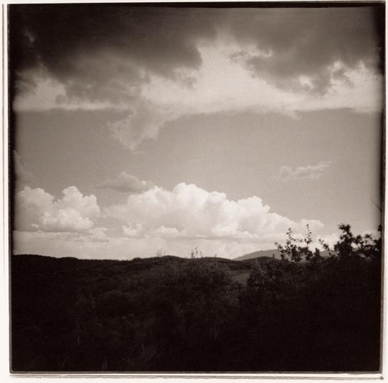 08 dark vista Organ Pipe Cactus NP Ariz