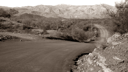 Badger Springs Road 1