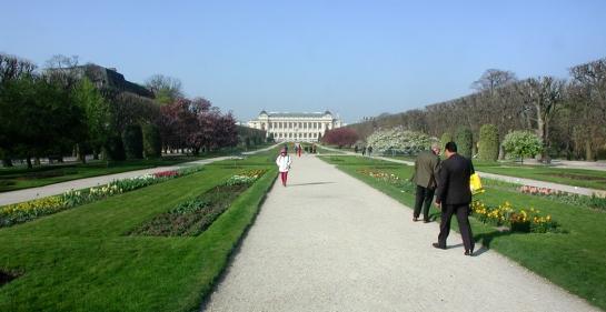 jardin main walkway