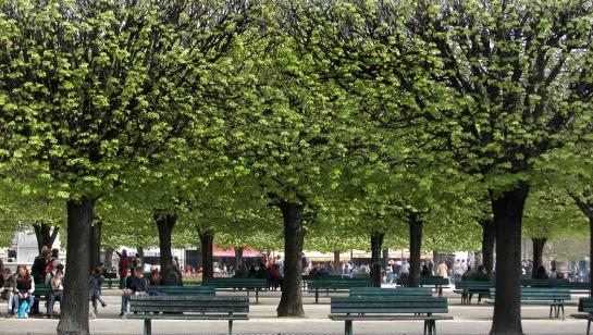 luxembourg garden horiz