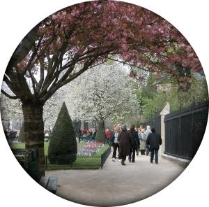 NDP church garden tondo