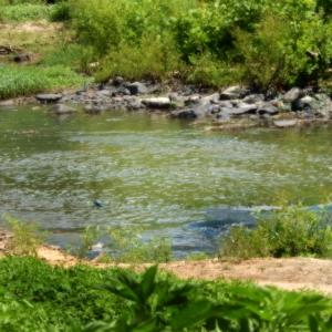Deep River, NC