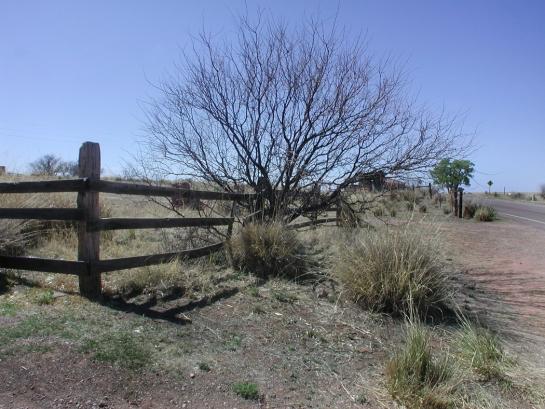 Elgin, Arizona