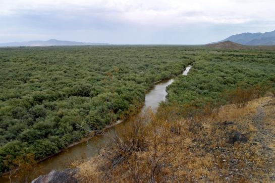 Gila River south of Phoenix
