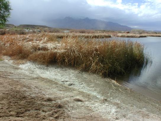 Roper Lake, Mt. Graham in storm