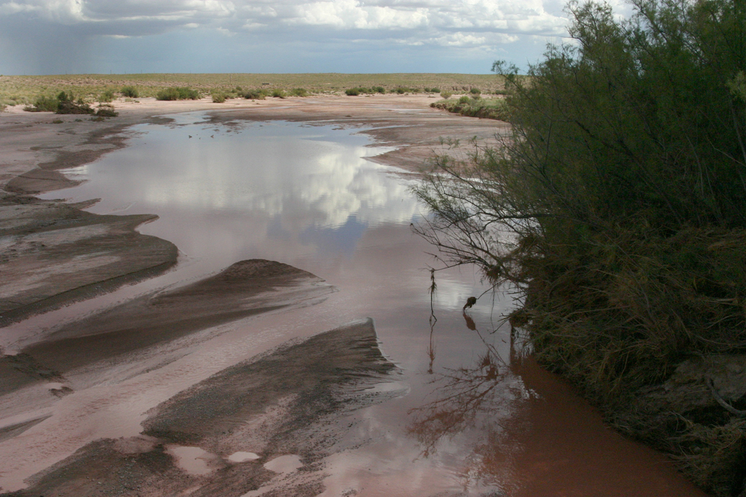 Little Colorado River, Holbrook