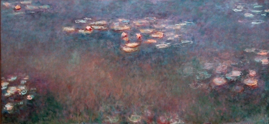 monet waterlilies st louis